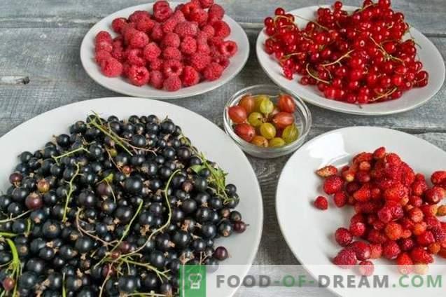 Dažādi ogu ievārījumi - vasaras dārza garša