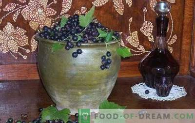 Cum se face vinul de coacăze negre? Cinci retete pentru vinuri simple de casă negre de casă: tânăr, desert, lichior