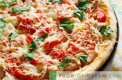 Vistas picas - labākās receptes. Kā pareizi un garšīgi pagatavot picu ar vistu.