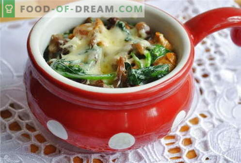 Mushroom julienne - the best recipes. How to properly and tasty cook juliens with mushrooms.