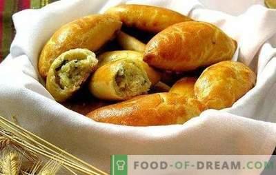 """Placki ziemniaczane w piekarniku - """"fast food"""" po rosyjsku. Przepisy na ciasto i nadzienia na najsmaczniejsze placki ziemniaczane w piekarniku"""