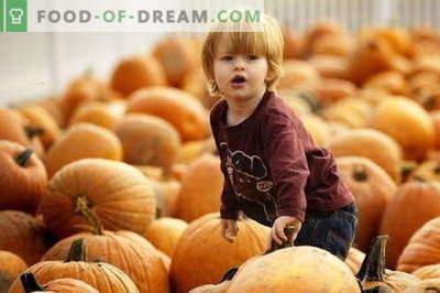 Ķirbju biezenis bērniem - labākās receptes. Kā pareizi un garšīgi bērnu ķirbju biezeni.