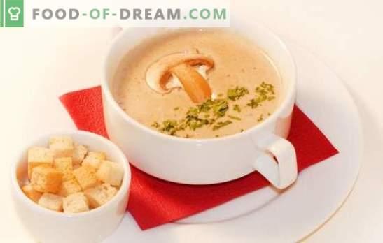 Sēņu zupu biezenis - maiga jūsu iecienītākā ēdiena versija. Labākās sēņu krēmzupa receptes: krējums, siers, rīsi, brendijs, garneles
