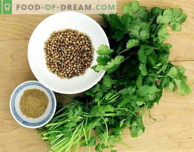 Koriandrs - apraksts, īpašības, izmantošana ēdiena gatavošanā. Receptes ar koriandru.