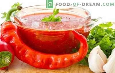 Adjika no tomātiem un ķiplokiem ziemai: karsts temats mājās. 7 labākās adjika receptes no tomātiem un ķiplokiem ziemai