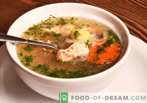 Zuppa di salmone - le migliori ricette. Come cucinare correttamente e gustoso zuppa di salmone.