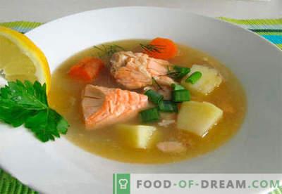 Lašu zupa - labākās receptes. Kā pareizi un garšīgi pagatavot laša zupu.