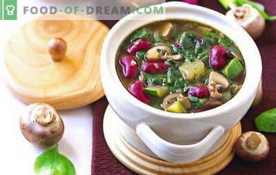 Постен супи - рецепти за секој ден. Како да правилно и вкусно гответе посно супи - рецепти за секој ден и на одмор
