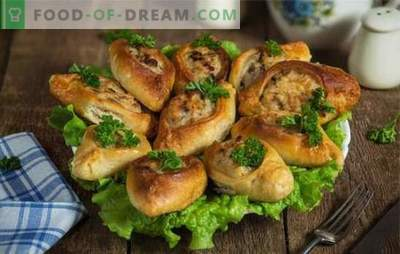 Pīrāgs ar malto gaļu ir neparasts rauga pīrāgs. Mājas receptes garšīgiem pīrāgiem ar malto gaļu un zivīm