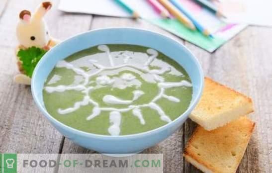 Zupu biezenis bērniem - ēdieni no kosmosa izvēlnes! Dažādu zupu izvēle bērniem ar labību, dārzeņiem, gaļu