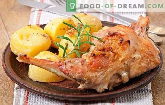 Pratos do coelho: receita rápida é uma iguaria acessível. Pratos do coelho - receitas rápidas para carne saborosa e tenra
