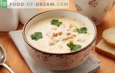 Pollock zupa - trauks ar lielisku garšu! Pareiza pollaka zivju zupas gatavošana ar dārzeņiem, olām, graudaugiem, sieru, pienu