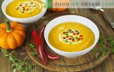 Zupu biezeņu receptes ir ātras un garšīgas - maigas un barojošas. Kā pagatavot krējuma zupu: ātru un garšīgu pirmo ēdienu receptes