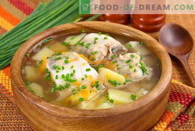Zivju zupa - labākās receptes. Kā pareizi un garšīgi pagatavot zivju zupu.