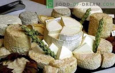 Kā padarīt kazas sieru mājās: idejas mazajiem uzņēmumiem, ņemot vērā sankcijas. Mājas siera siers - labāk!