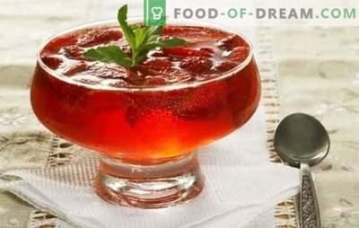 Viegls un garšīgs deserts - želeja no ievārījuma. Vienkāršas un oriģinālas želejas receptes ar želatīnu un agara agaru
