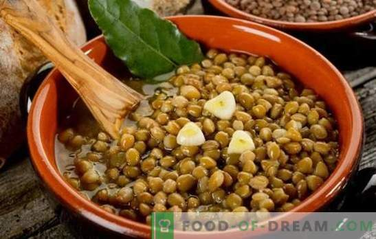 Lentil porridge is a healthy and unusual dish for every day. Various lentil porridge recipes for health and joy