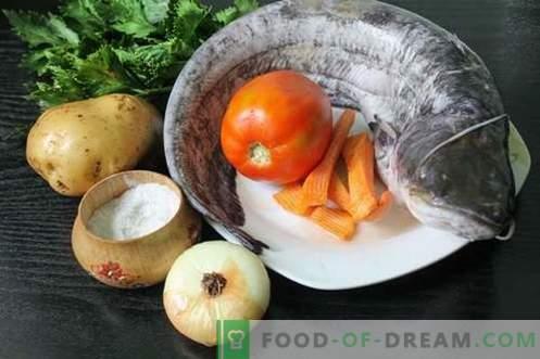 Sarkanas zupa - kā to pagatavot pareizi un garšīgi (recepte ar fotogrāfijām)