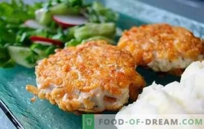 Chuletas de pollo en toda su diversidad! Recetas de jugosas y sabrosas piezas de pollo con queso, champiñones, arroz y salsa de crema