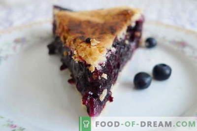 Melleņu pīrāgs - labākās receptes. Kā pareizi un garšīgi gatavot melleņu pīrāgu.
