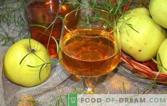 Il vino di mele a casa non è facile, ma molto semplice! Ricette per fare del vino delizioso dalle mele a casa