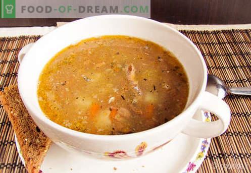Saury Soup - pārbaudītas receptes. Kā pareizi un garšīgi pagatavot salātu zupu.