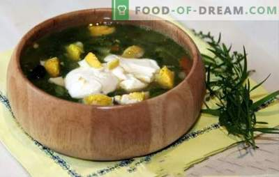 Rupjmaizes zupa vistas buljonā - pavasara-vasaras ēdienkarte. Riekstu zupa ar vistas buljonu - ātras receptes pirmajiem kursiem ar veselīgu racionalismu