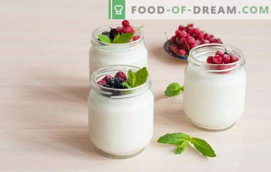 Kā padarīt jogurtu mājās: tehnoloģijas. Jogurta receptes mājās: jogurta ražotājā, termosā, katliņā