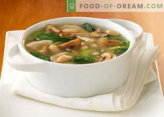 Супа од печурки направени од суви, свежи, замрзнати печурки и шампињони - најдобри рецепти. Како правилно и вкусно да готви супа од печурки измешана со сирење, крем и бавен шпорет.