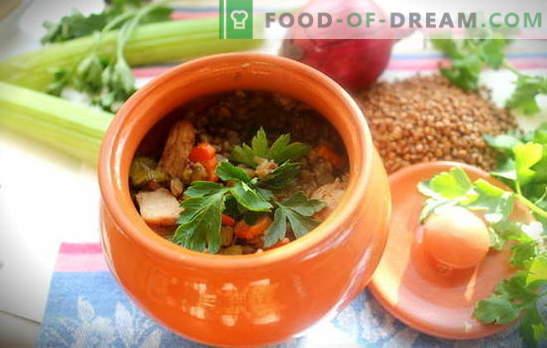 Trigo sarraceno con carne en una olla - gachas desmenuzables sin problemas. 6 mejores recetas para cocinar alforfón con carne en una olla