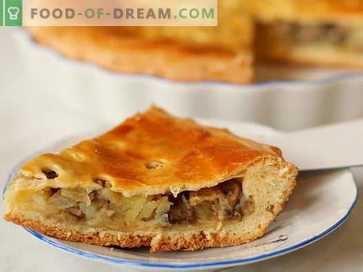 Mushroom Pie - labākās receptes. Kā pareizi un garšīgi pagatavot pīrāgu ar sēnēm.