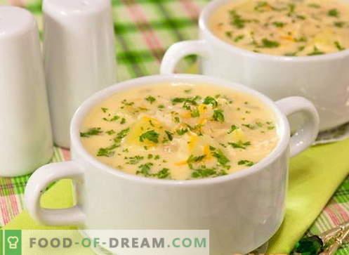Käsesuppe - die besten Rezepte. Wie man richtig Käsesuppe kocht.